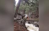 Thót tim với cô gái mạo hiểm tập yoga trên cây cầu gỗ bắc qua suối