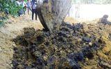 Phạt Formosa 510 triệu đồng về hành vi chôn chất thải độc hại trong trang trại