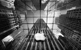 Apple chính thức thừa nhận cố tình làm chậm iPhone