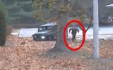 Lính Triều Tiên đào tẩu là con quan chức quân đội cấp cao?