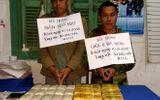 Bắt 2 đối tượng nước ngoài vận chuyển 30.000 viên ma túy vào Việt Nam