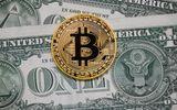 Giá bitcoin hôm nay 23/1: Giảm thêm 800 USD, Bitcoi khó phục hồi