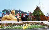 Lễ hội Kỳ quan muôn sắc hoa Hạ Long, mỗi tuần một điều hấp dẫn mới