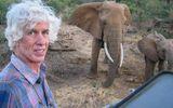 Nhà điều tra hoạt động buôn lậu ngà voi, sừng tê giác hàng đầu bị sát hại