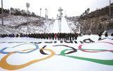 Hàn Quốc chi 13 tỷ USD cho Olympic, có thể bị lỗ nặng