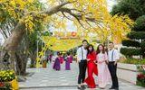 """Nhiều màn trình diễn nghệ thuật đặc sắc tại lễ hội """"Mai vàng sắc xuân"""" Sun World Danang Wonders"""