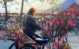 Dự báo thời tiết ngày 15/2: 30 Tết miền Bắc ấm áp, Nam Bộ thuận lợi bắn pháo hoa