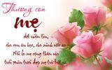 Lời chúc 8/3 hay và ý nghĩa nhất dành tặng mẹ, vợ, những người phụ nữ thân yêu