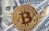 Giá Bitcoin hôm nay 5/3/2018: Nhà đầu tư vui mừng vì tăng lên lưỡng 11.400 USD