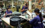 Hà Nội đưa 6,7 triệu cổ phần tại cơ điện Thống Nhất ra bán đấu giá