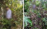 Vụ 2 cha con bị sát hại khi vào rừng tìm mật ong: Nghi can treo cổ tự tử