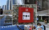 Vụ cháy chung cư Carina Plaza: Chuông báo cháy không hoạt động?