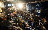 Hàng trăm ô tô, xe máy cháy rụi dưới hầm chung cư Carina Plaza: Ai đền bù?
