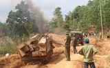 Tạm đình chỉ Giám đốc Công ty lâm nghiệp để phá rừng ở Đắk Lắk