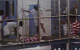 Nhà tù tư nhân ở Mỹ: Đánh đập, tự sát và những lính gác bị trả lương thấp