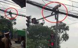 Video: Bị CSGT giữ xe, nam thanh niên trèo lên cột đèn giao thông ăn vạ