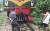 Tai nạn đường sắt, một phụ nữ người Mông dính chặt vào đầu tàu tử vong