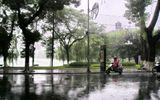 Dự báo thời tiết ngày 20/4: Miền Bắc mưa rào, đề phòng tố, lốc