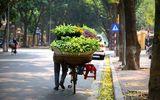 Dự báo thời tiết ngày 21/4: Bắc Bộ nắng nóng, Nam Bộ có nơi trên 35 độ C