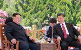 Ông Tập Cận Bình nhấn mạnh 'tình bạn thân thiết' giữa Trung Quốc và Triều Tiên