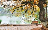 Dự báo thời tiết ngày 2/6: Hà Nội cuối tuần mát mẻ, Nam Bộ có mưa dông