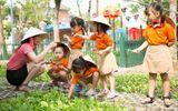 Trường mầm non BabyBees Phuc Long: Nơi ươm mầm tương lai tỏa sáng cho bé