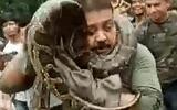 """Clip: Trăn """"khổng lồ"""" dài 10 mét siết cổ thợ săn ở Ấn Độ"""