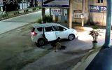 """Clip: """"Cẩu tặc"""" đi ôtô, bắn súng điện trộm chó ngay trước cửa nhà dân"""