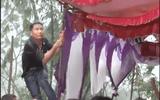 Thanh niên ôm chặt cột, giữ rạp đám cưới không đổ trong ngày cơn bão số 3 đổ bộ