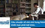 Video: Chú chó trung thành và hành trình tìm chủ xúc động