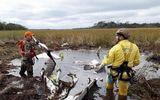 Tìm thấy máy bay chở Bộ trưởng Paraguay, cả 4 người thiệt mạng