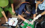 Công an tỉnh Bà Rịa- Vũng Tàu khởi tố vụ án vận chuyển 119 kg cocaine