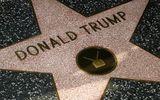 """Ngôi sao của Tổng thống Trump trên Đại lộ Danh vọng đứng trước nguy cơ bị """"xóa sổ"""""""