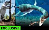 3 quái vật khổng lồ thời tiền sử có thể vẫn sống sót tới ngày nay