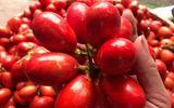 Quả máu, đặc sản trái cây rừng kì lạ của Quảng Ninh