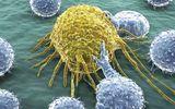 Phát hiện hóa chất mới có thể tiêu diệt tế bào ung thư não