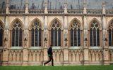 Danh sách 30 trường đại học được các nhà tuyển dụng đánh giá cao nhất trên thế giới