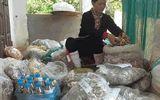 Bệnh nhân biết ơn lương y Triệu Thị Hòa nhờ bài thuốc đau nhức xương khớp quý