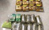 TP.HCM: Bao vây, bắt 2 đầu nậu, thu giữ gần 40kg ma túy