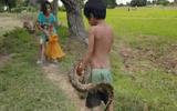 """Video: Rùng mình cảnh chị kéo trăn """"khủng"""" đang quấn quanh người em trai"""