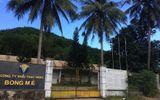 Công ty Vàng Bồng Miêu chính thức phá sản, để lại khoản nợ gần 1 nghìn tỷ đồng