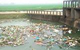 """Xác động vật vứt đầy sông hồ: Dân """"nếm"""" đủ hậu quả"""