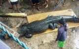 Video: Bẫy được cá sấu khổng lồ nghi ăn thịt một ngư dân