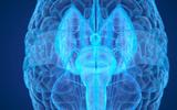 Trung Quốc tiến hành nghiên cứu sức mạnh tâm linh với máy quét sóng não hiện đại nhất thế giới