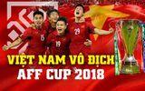 Video: 15 bàn thắng siêu phẩm đưa đội tuyển Việt Nam lên ngôi vô địch AFF Cup 2018