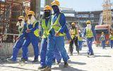 8 nghề mà doanh nghiệp xuất khẩu lao động Việt Nam bị cấm đưa người sang làm việc
