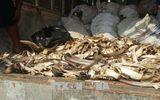 Hưng Yên: Bắt giữ 2 xe ô tô chở 6,5 tấn xương động vật bốc mùi hôi thối