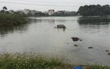 """Tin tai nạn giao thông mới nhất ngày 24/12/2018: Người phụ nữ tập lái đâm vào 2 bé trai, xe """"bay"""" xuống hồ chìm nghỉm"""
