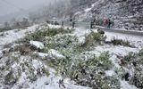 Thời tiết Tết Dương lịch 2019: Miền Bắc rét kỷ lục, có thể xuất hiện mưa tuyết, băng giá