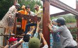 Hoàn tất tháo dỡ biệt phủ trái phép của đại gia vàng ở Đà Nẵng
